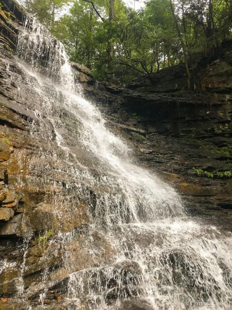 Broadtree Falls