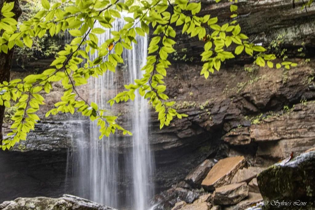 Lower Greeter Falls