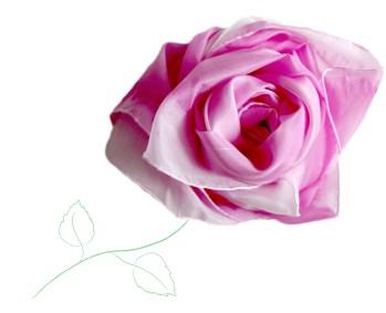 pinkribbonrose