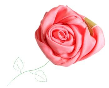 redgreenrose