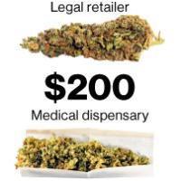 Los experimentos, con marihuana