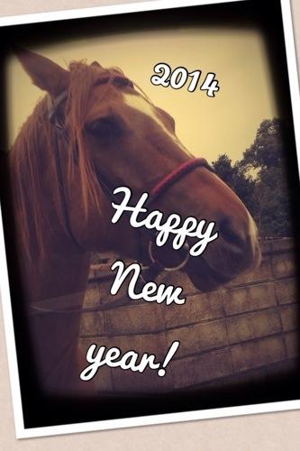 2014年もどうぞよろしく!モレスキンのマンスリー絵日記公開からスタート!
