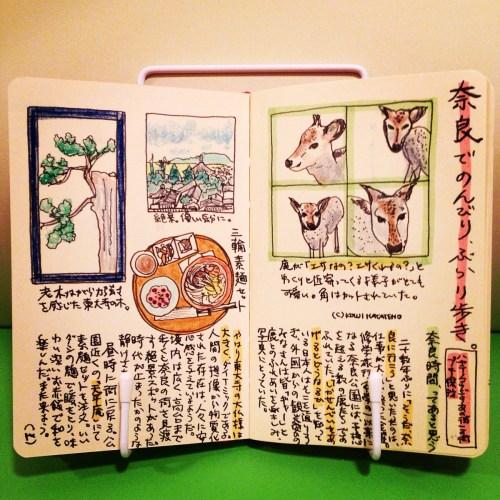 大阪にいたので、ふらっと奈良へ。20年以上ぶりに奈良公園と東大寺に行ってみた。奈良時間と散策を楽しんだ休日は、鹿を観察した日でもあった。