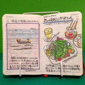 2015年6月29日のモレスキン絵日記。同じく北欧好きの同僚と、たっぷりの野菜が乗ったサラダランチを食べました。