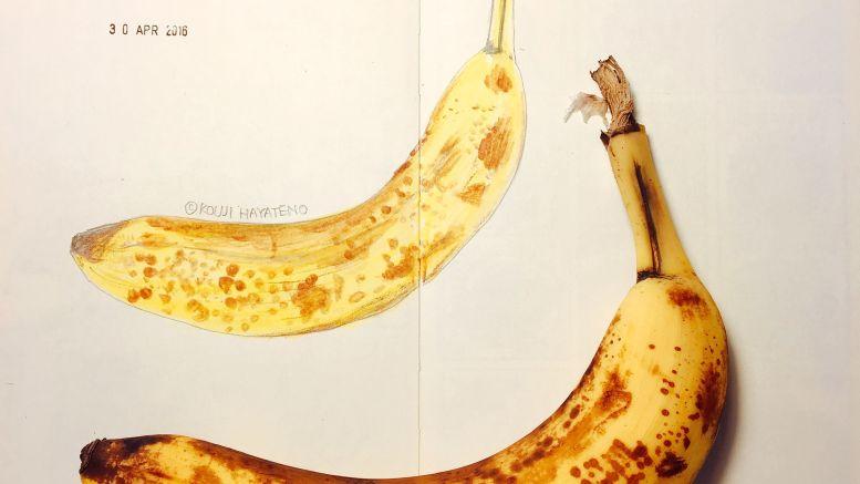 art_banana_20160430