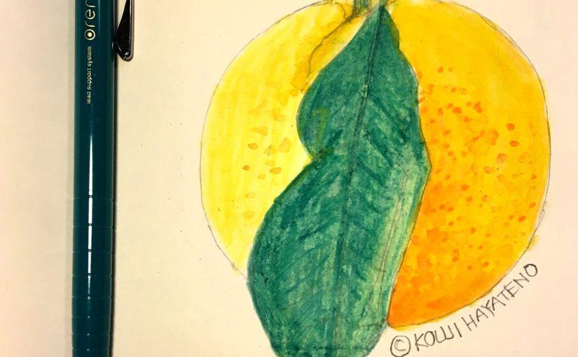 オレンズでスケッチ。グリーンな葉と鮮やかなオレンジを描く #オレンズ