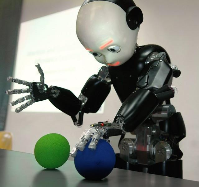 iCub Robot