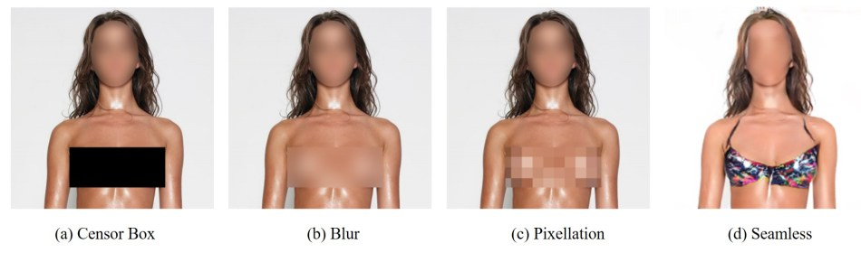 Techniques for censoring sensitive regions of an image.jpg