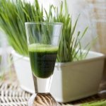 fresh-wheatgrass-with-juice-shot