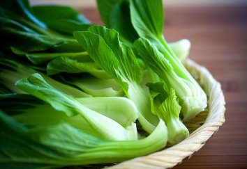 The Beauty of Bok Choy!