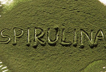 Spirulina; Nature's First Food!