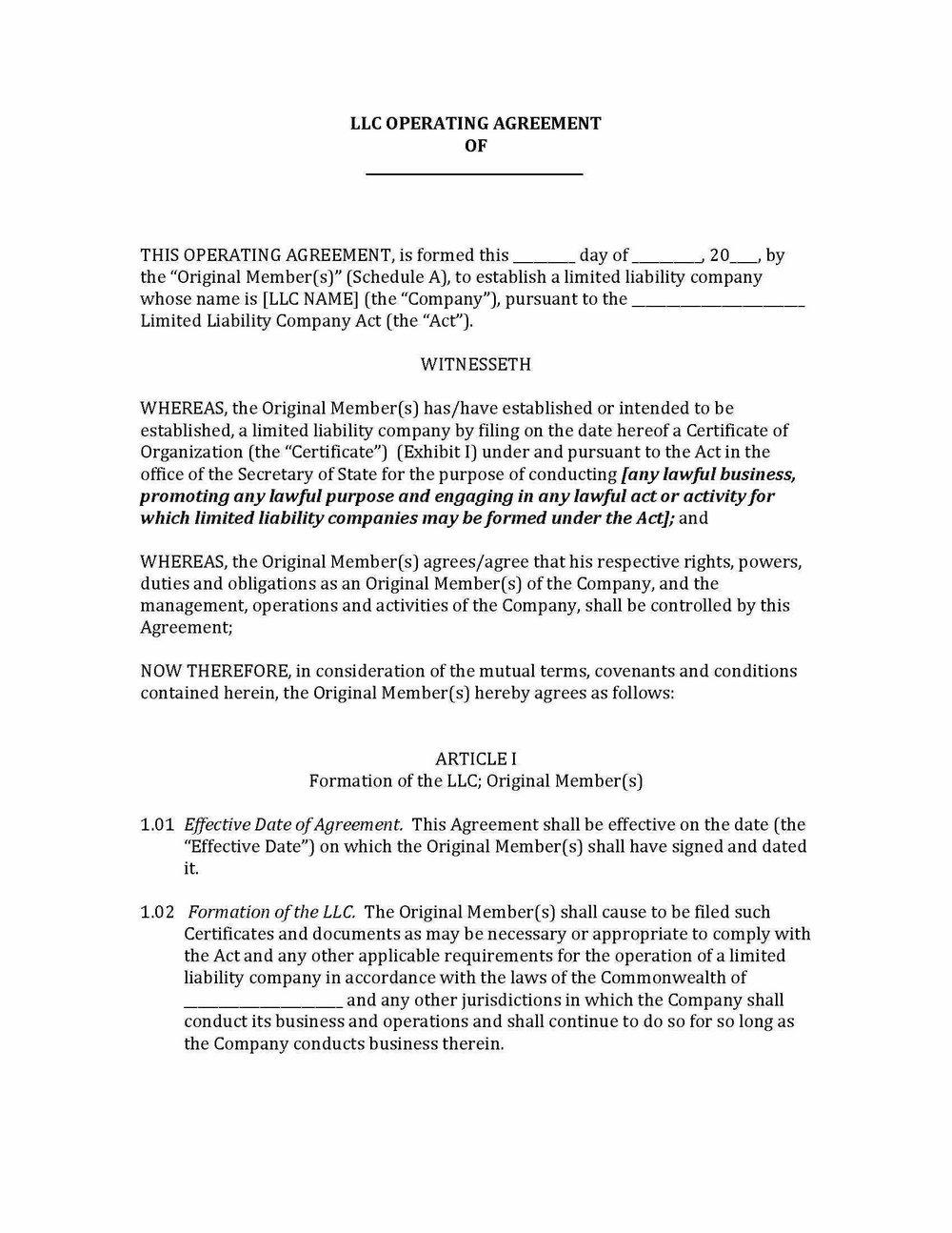 Single Member Llc Resolution Template