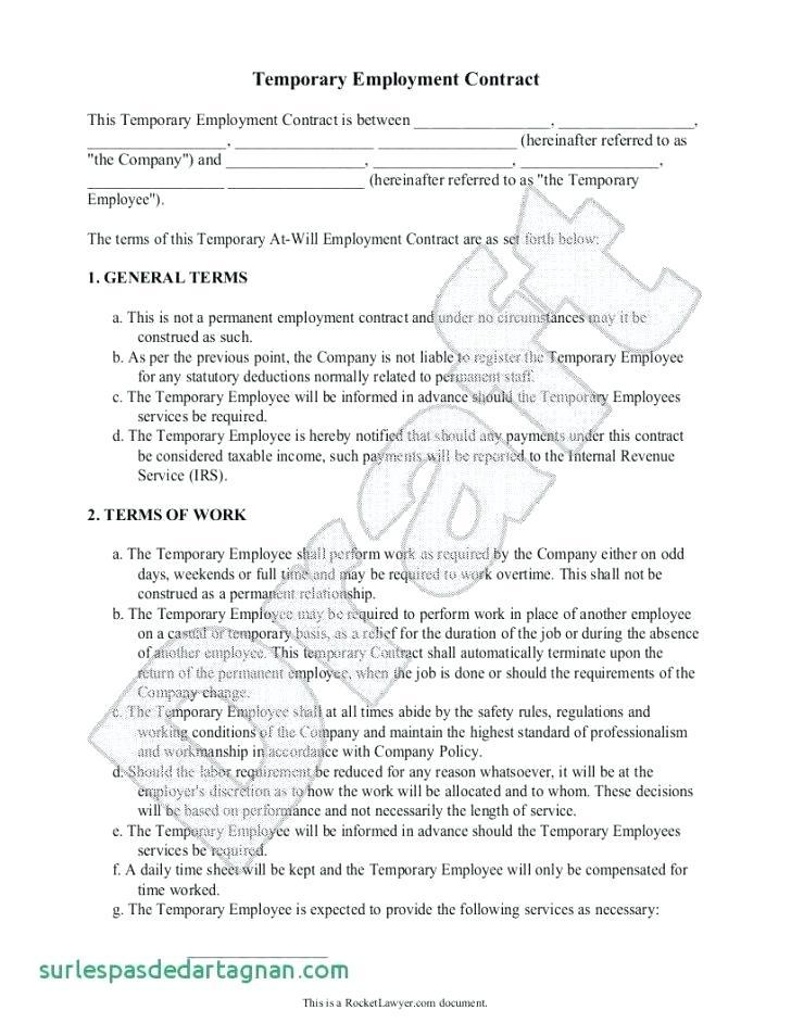 Basic Employment Contract Template South Africa