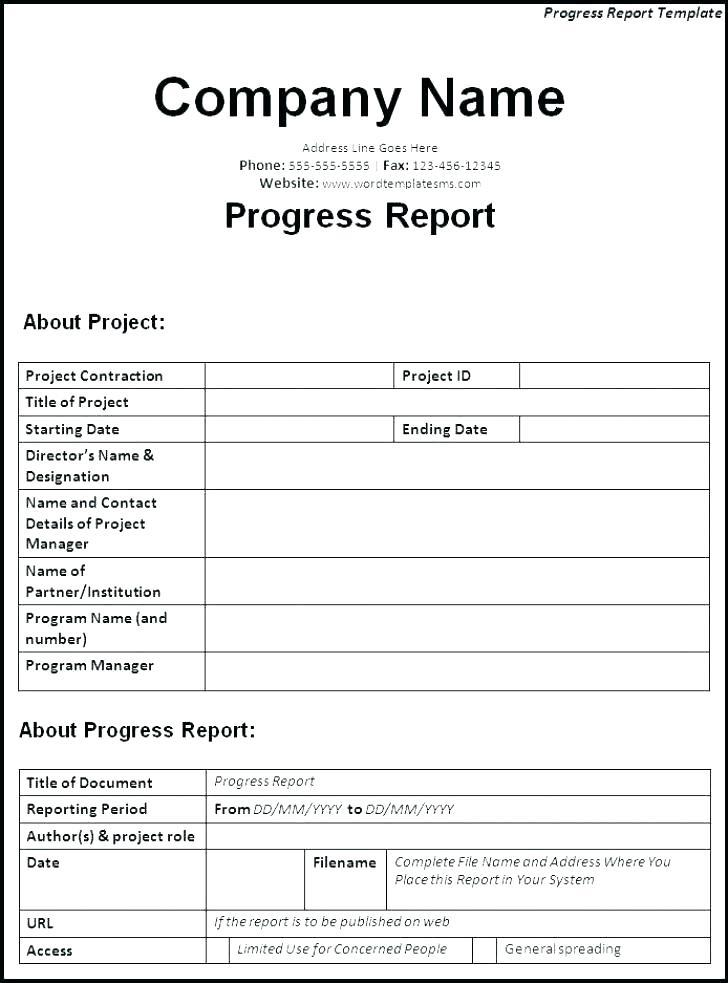 Construction Site Daily Progress Report Template