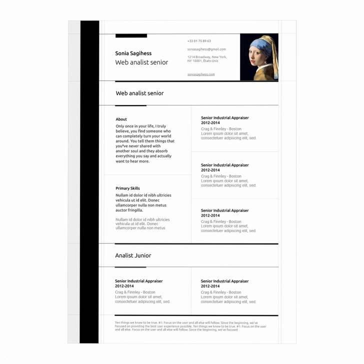 Mac Pages Resume Templates 2016 Free
