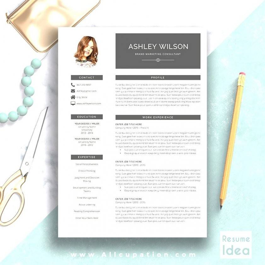 Modern Resume Template Mac