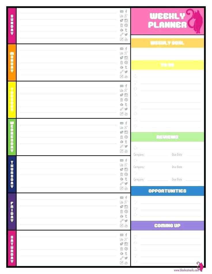 Monthly Planner Excel Template 2017