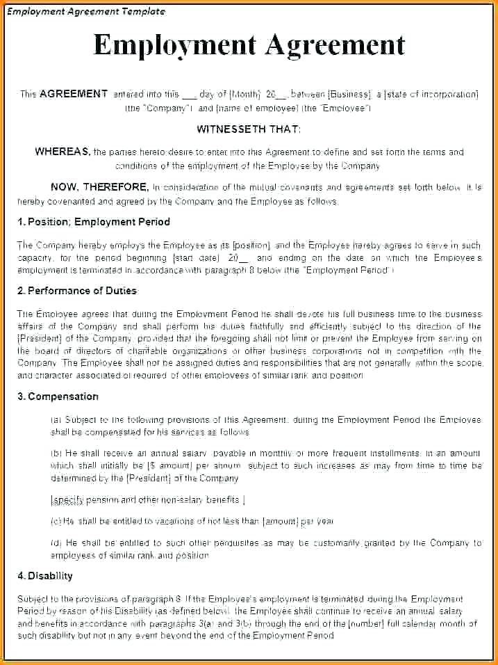 Temporary Employment Contract Template Nz
