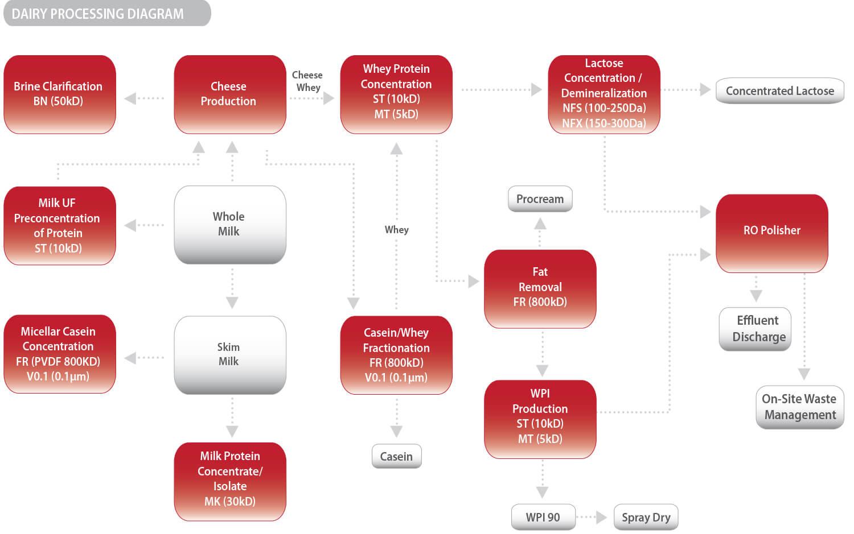hight resolution of diagram of milk fat