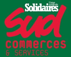 ob_c91e05_logo-sud-commerces-et-services-couleur