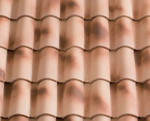 Roof Tile Color - Ares
