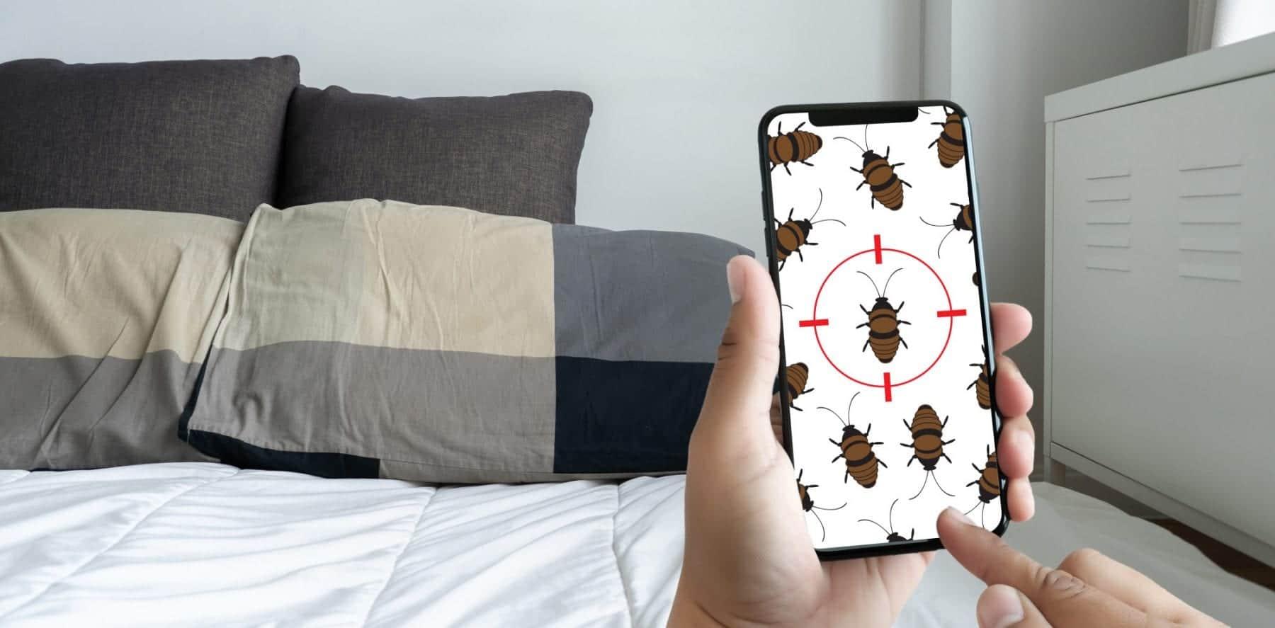 bed-bug-bites