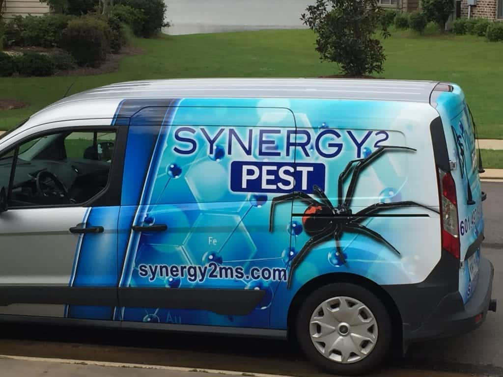 Synergy-Pest-Control-Jackson-MS