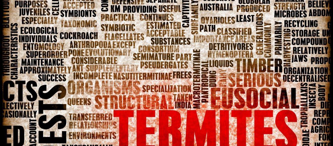 Termites Concept as a Pest Control Problem