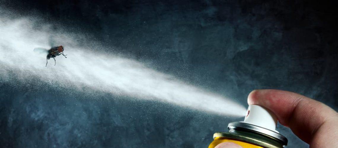 Man,Spraying,On,A,Fly,A,Poisonous,Aerosol