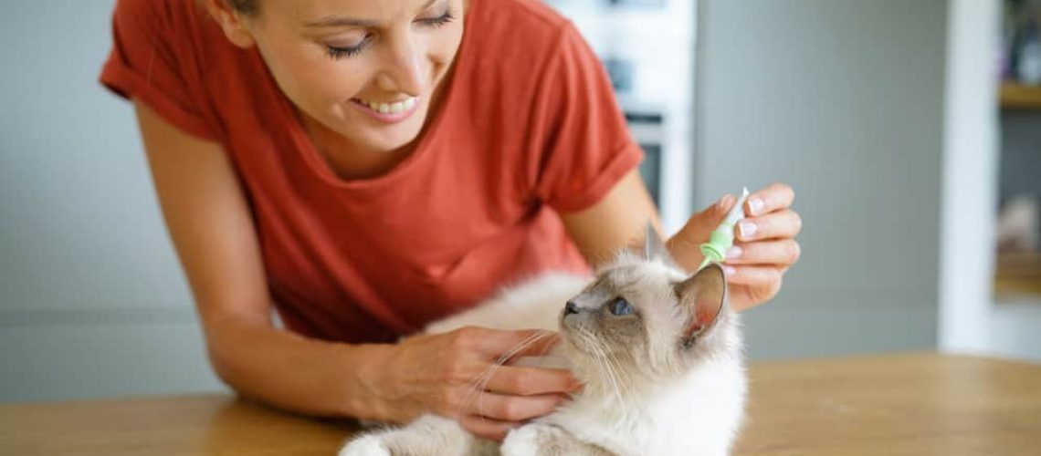 Woman,Injecting,Cat,Product,To,Prevent,From,Fleas