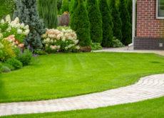 Purchase a lawn care services company.