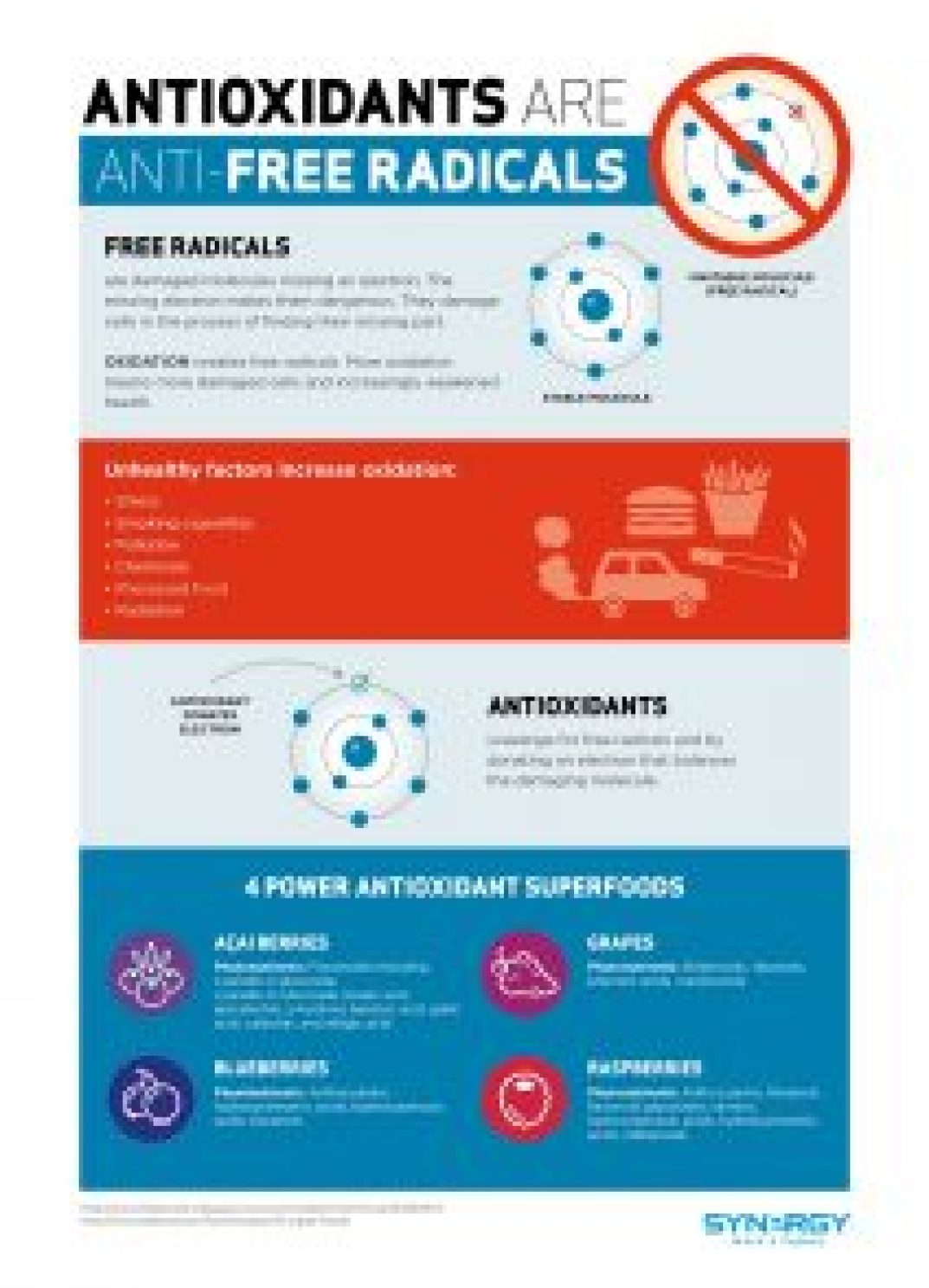 antioxidants-infographic-en