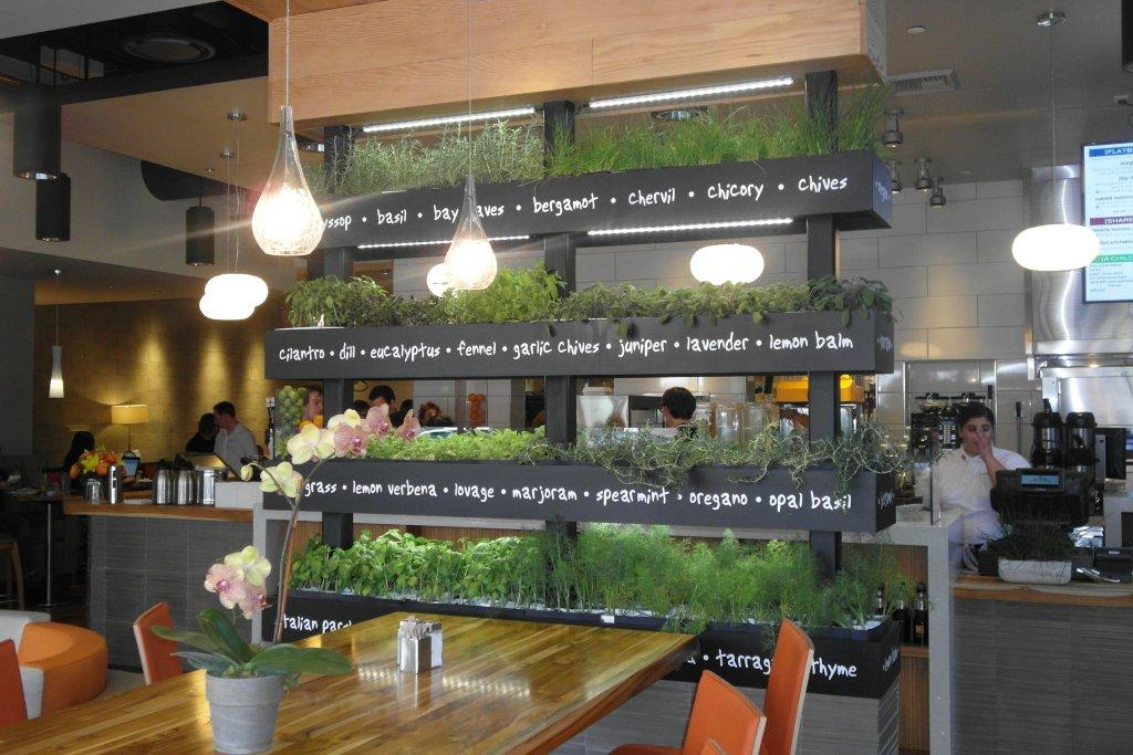LYFE Kitchens Green Restaurant Design  Tips Trends and