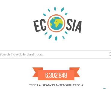 Screenshot of Ecosia Web Search Engine