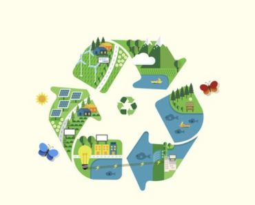 How to make your Organization Green