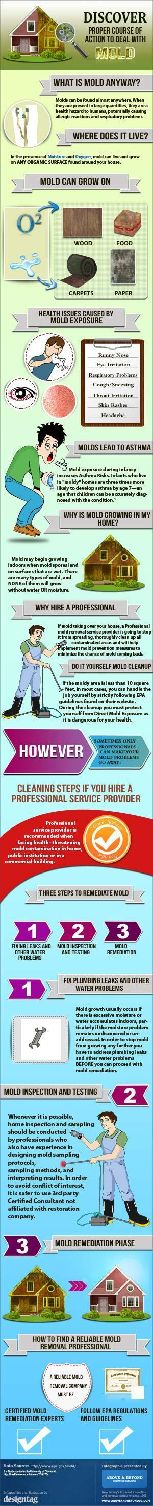 Mold Prevention!