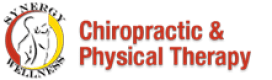 Synergy Wellness Chiropractic New York City Chiropractor