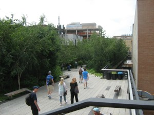 High Line Park Image by Katherine McDaniel
