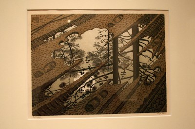 Puddle by M.C. Escher  © Christian with CCLicense