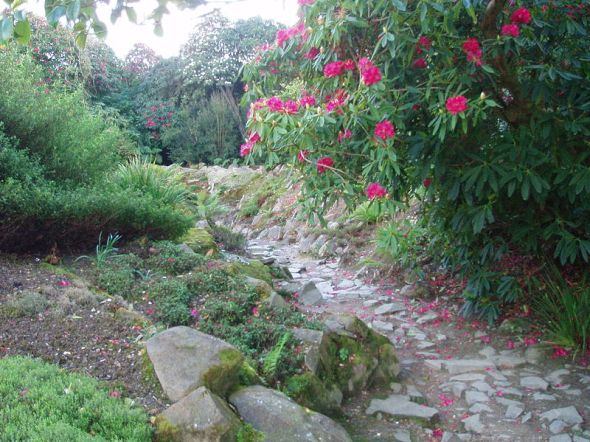 Ravine Garden at Heligan © Carcharoth with CCLicense