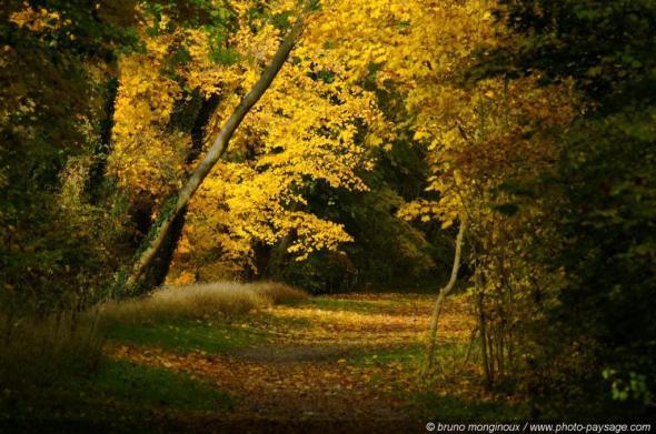 © B. Monginoux / Landscape-Photo.net with CCLicense