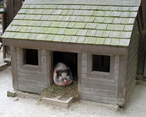 Pig House © Svadilfari with CCLicense