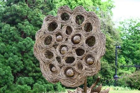 Lotus seedpod image © Andrew_M_Whitman with CCLicense