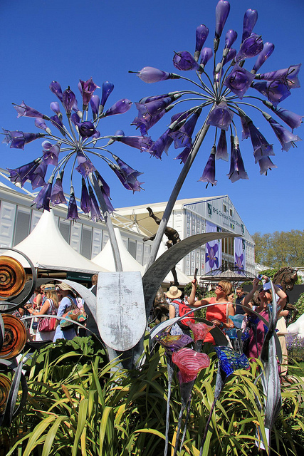 Aganpanthus towers above the crowd at the RHS Chelsea Flower Show