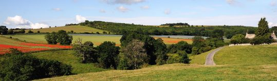 Rolling hills of the Cotswolds. © Saffron Blaze with CCLicense