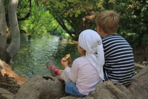 kids-250844_960_720
