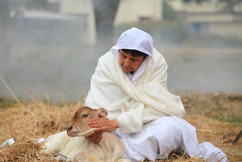 1024px-Acharya_Shri_Chandanaji_-_Compassion.jpg