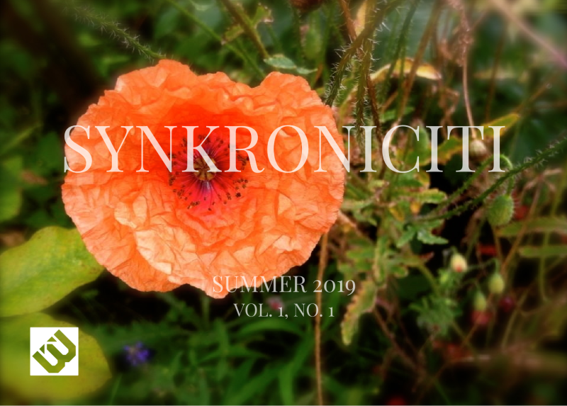 Synkroniciti Summer 2019
