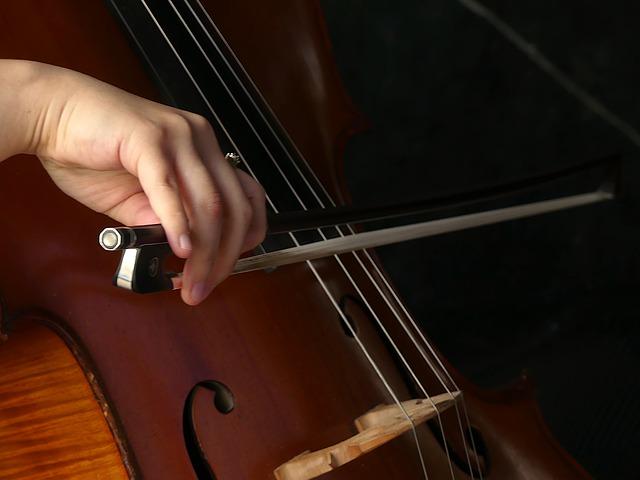 cello-4412504_640