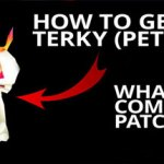 How to get Terky. What's Coming in Patch 6.2.3?